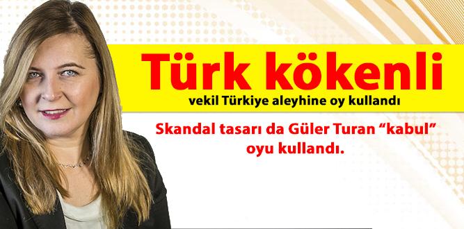 Türk kökenli vekil Türkiye aleyhine oy kullandı